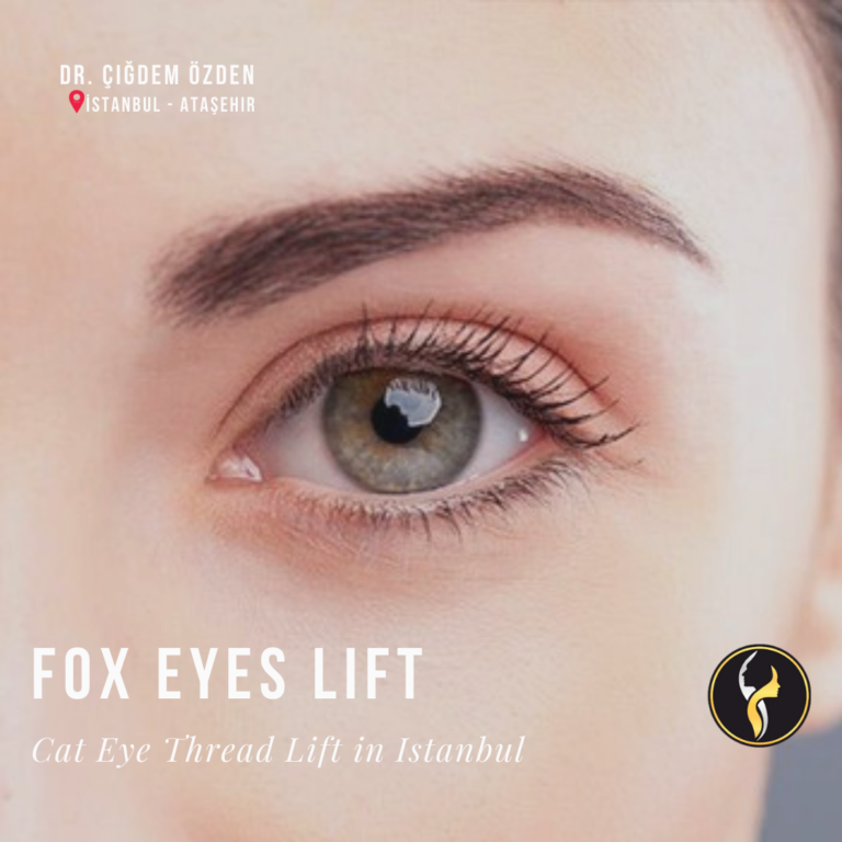 fox-eyes-istanbul